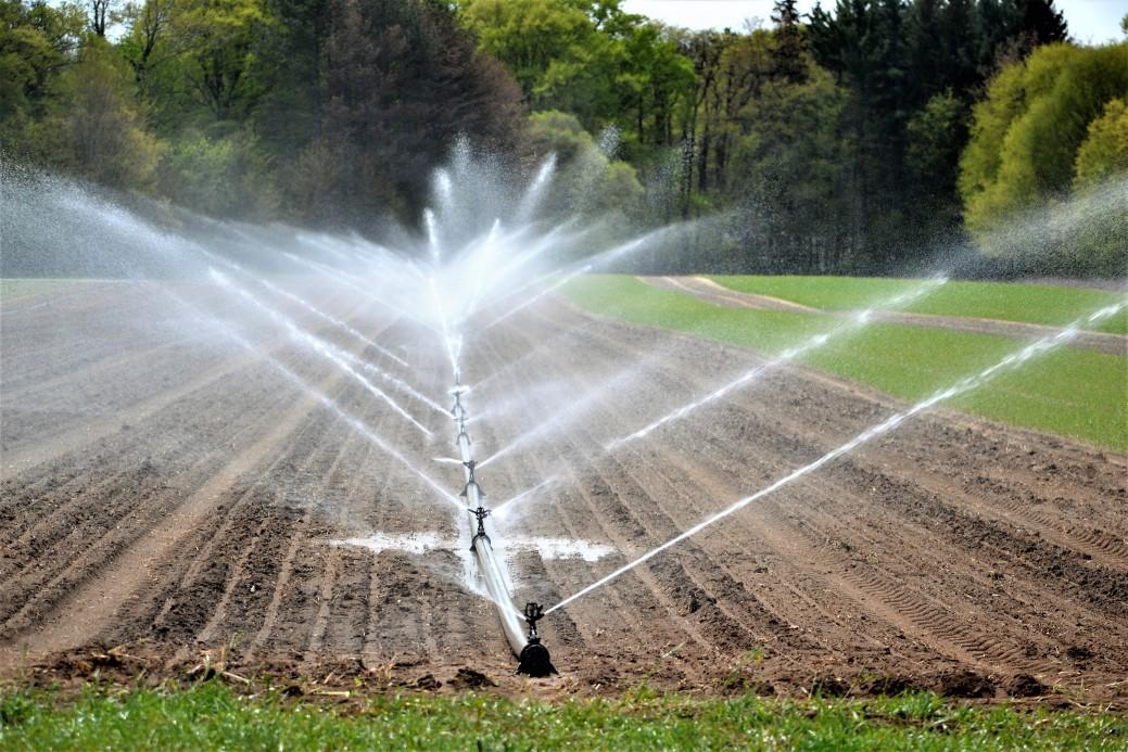 Automatyczne nawadnianie ogrodów – co to takiego?